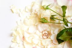 Beautiful toned picture with wedding rings lie on white against the background of flowers. White roses stock image