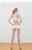 Beautiful toned woman posing in sportswear Stock Photos
