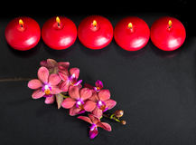 Beautiful top down spa concept of twig red orchid flower, phalae Royalty Free Stock Image