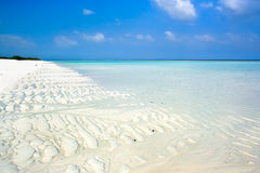 Beautiful topical white sand beach. Summertime at the beautiful topical white sand beach, India Stock Photography