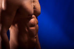 Beautiful Torso Stock Photography