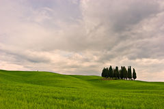 Beautiful Toscana Royalty Free Stock Photography
