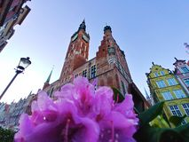 Beautiful town hall in the centre of Gdansk. stock photography