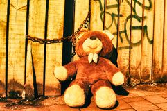 A beautiful toy teddy bear on the street antwerp vintage retro wood royalty free stock photography