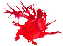 Beautiful traced  watercolor splatter. Stock Image
