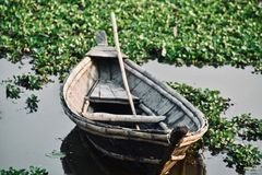 Traditional boat parked in the pond water stock images