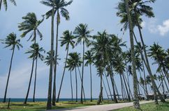 Beautiful traditional village located in terengganu, Malaysia.surrounded by nature Stock Photo