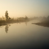 Beautiful tranquil landscape of misty swamp lake Stock Images