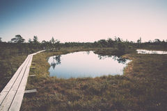 Beautiful tranquil landscape of misty swamp lake Royalty Free Stock Images