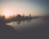 Beautiful tranquil landscape of misty swamp lake Stock Photo