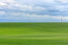 Beautiful tranquil meadow under the mild cloudy sky and power line at the horizon Stock Photos