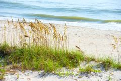 Beautiful tranquil shoreline beach scene with sea oats and gentle waves stock photo