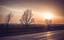 Beautiful tranquil sunset over the highway and cultivated field Royalty Free Stock Photos