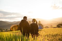 Beautiful traveler couple on yellow rice fields in Thailand stock photography