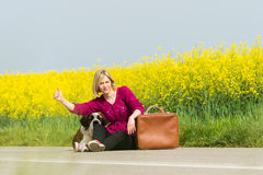 Beautiful traveller girl. Girl with a dog hitchhike Royalty Free Stock Photos