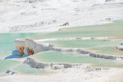 Beautiful travertine with water in Pamukkale Royalty Free Stock Image
