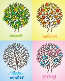 Beautiful tree in four seasons Royalty Free Stock Photos