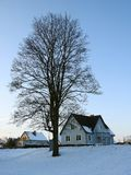 Nice tree and homes in sunset colors, Lithuania Stock Image
