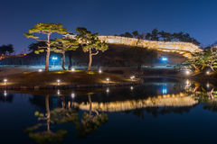 Beautiful tree in Hwaseong Fortress at night in Suwon, South Kor Stock Photography