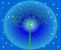 Beautiful tree. Illustration of a beautiful tree in the night Stock Photography