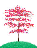 Beautiful tree. Beautiful red tree isolated on white background vector illustration