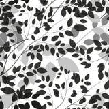 Beautiful Tree Silhouette Seamless Pattern Stock Images