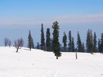 Beautiful Tree and Snow Mountain and field. Sonamarg, Kashmir,. India in Winter Time royalty free stock photo