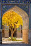 Beautiful tree with yellow leaves framed in arch of Shah Mosque. In Esfahan, Iran Stock Photo