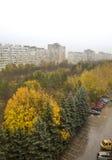 Beautiful trees: Autumn at the town Stock Photos