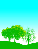 Beautiful Trees Background vector illustration
