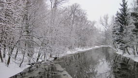 Beautiful trees near river in winter, Lithuania Stock Photography
