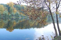 Beautiful trees reflecting in the lake in autumn stock images