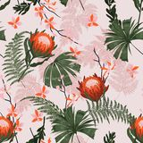 Beautiful Trendy protea Floral pattern in the many kind of flowers. Tropical botanical . Seamless vector texture. Printing with in royalty free illustration