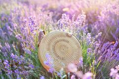 Beautiful trendy women straw circle bag in a lavender field. The concept of summer rest.Nature. Fashion royalty free stock photos