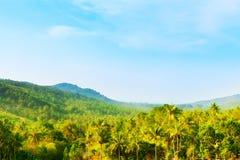 Beautiful Tropic Landscape Stock Images
