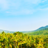 Beautiful Tropic Landscape Royalty Free Stock Photo