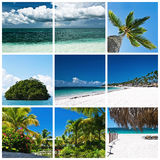 Beautiful tropic lifestyle collage Royalty Free Stock Photos