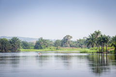 Beautiful tropic scenics Stock Photos