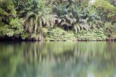 Beautiful tropic scenics Stock Images