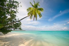 Beautiful tropical beach Stock Photography