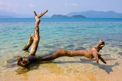 Beautiful tropical beach Stock Image