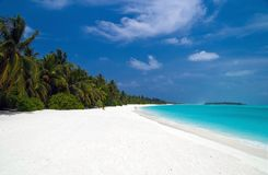 Beautiful tropical beach. With coconut palm trees Stock Photo