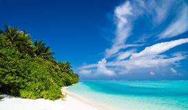 Beautiful tropical beach Royalty Free Stock Image