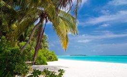 Beautiful tropical beach Royalty Free Stock Images
