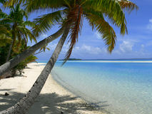 Beautiful tropical beach. A perfect view of a tropical beach with blue sky, blue water, a sandy beach and tall palm trees at the water's edge. Cook Islands Royalty Free Stock Photography
