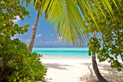 Beautiful tropical beach Stock Photo