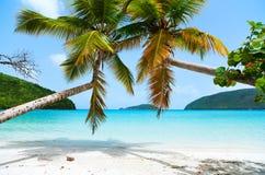 Beautiful tropical beach at Caribbean stock image