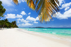 Beautiful tropical beach at Caribbean Stock Photos