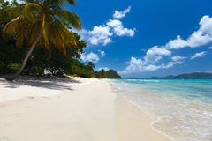 Beautiful tropical beach at Caribbean Royalty Free Stock Image
