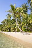 Beautiful tropical beach, coconut palm tree and clean sea water in Thailand Stock Photo